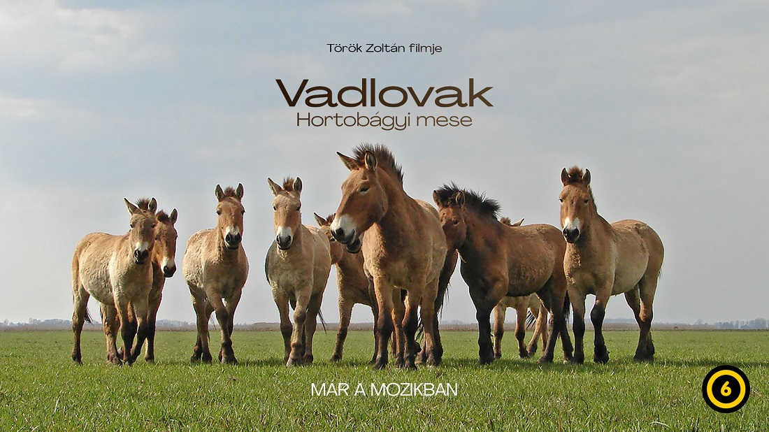 VADLOVAK - HORTOBÁGYI MESE